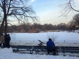 Slushy Central Park